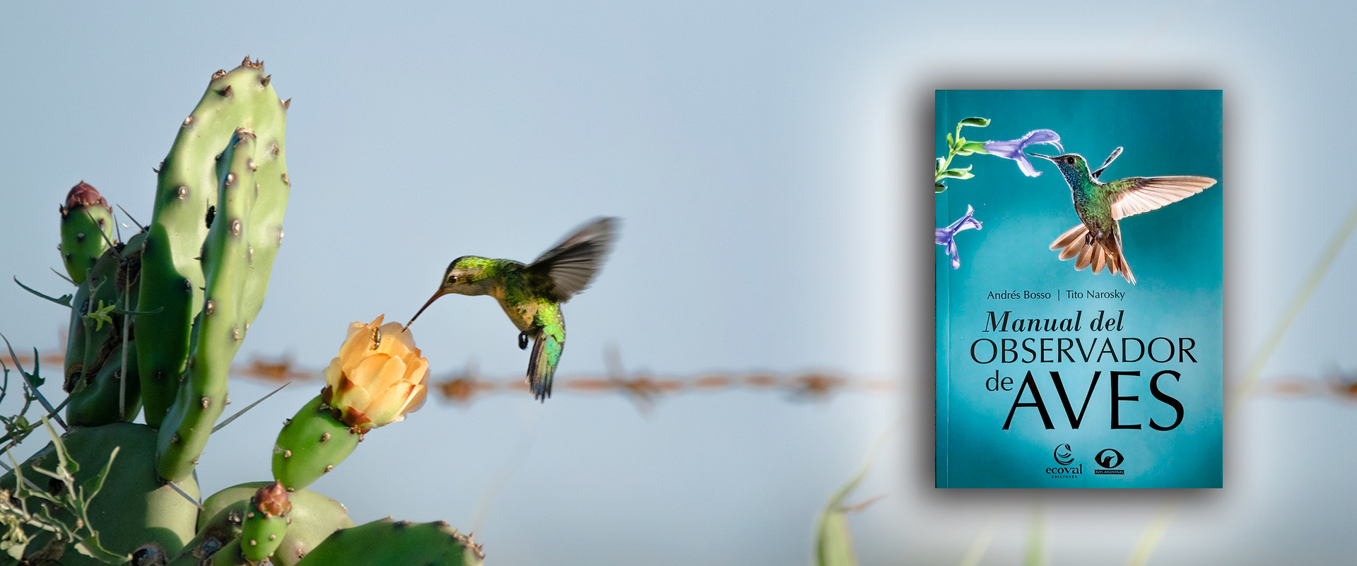Libros de Aves - Manual del Observador de Aves