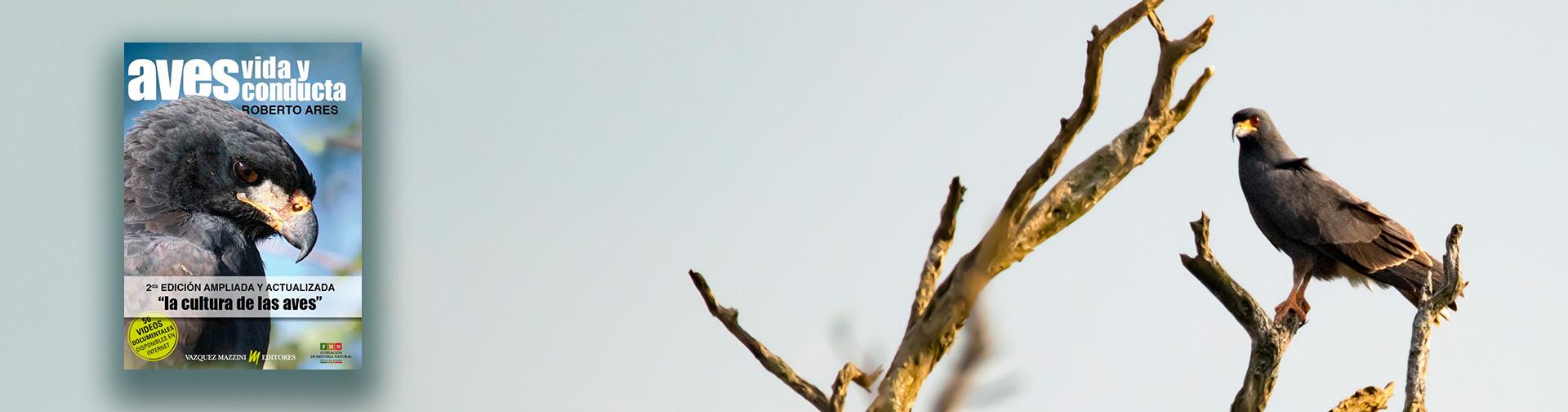 Vida de las Aves Libro