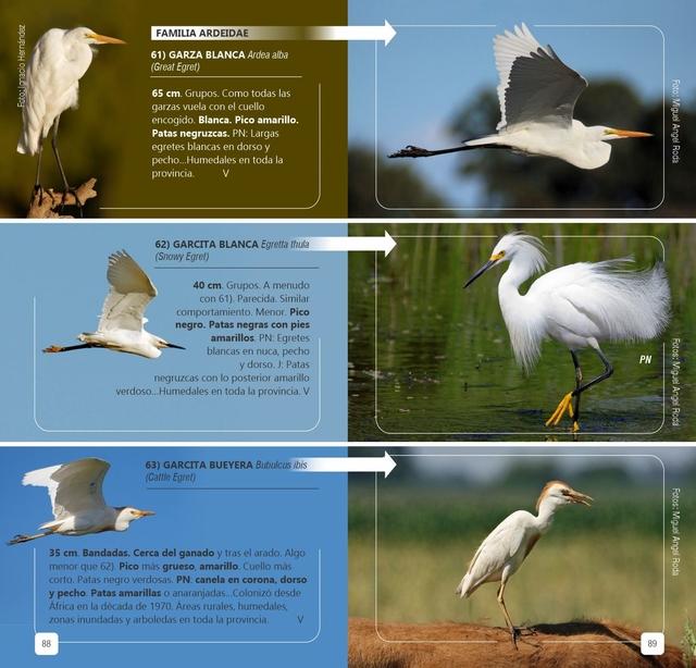 Libro Aves de la provincia de Buenos Aires
